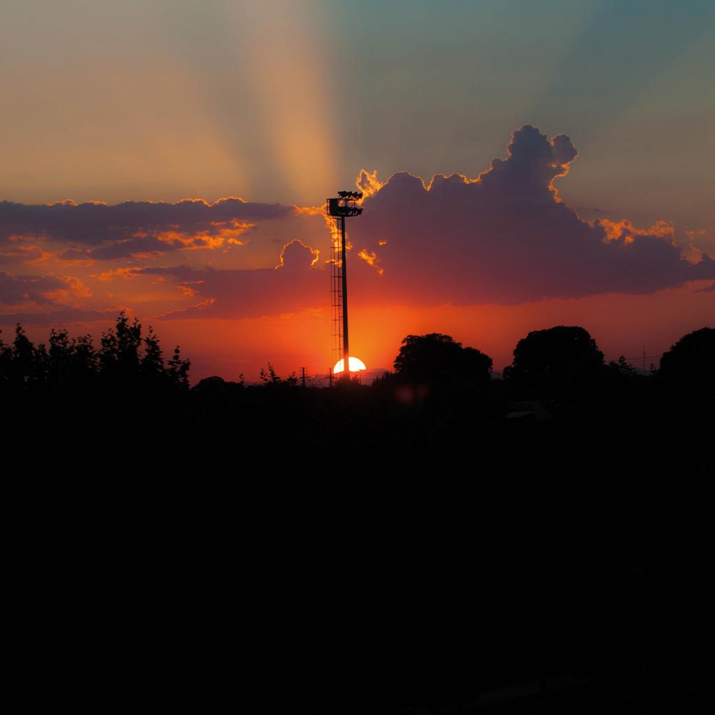 Dutch Daylight