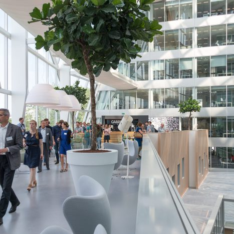 Dutch Daylight partner - Architectenweb
